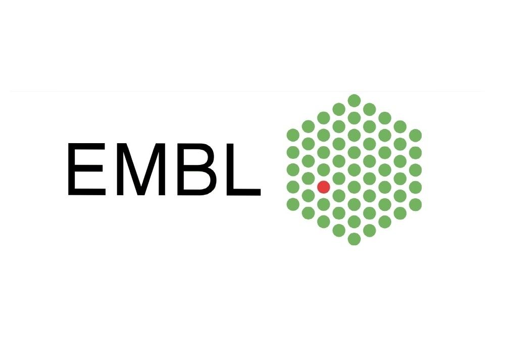 17. EMBL/EMBO Bilim ve Toplum Konferansı / Bugün İçinde Geçmiş: Belleğin Oluşumu! Kayıt Son Başvuru Tarihi: 28 Ekim 2016