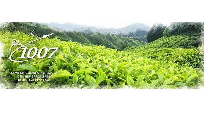 """TÜBİTAK 1007 """"Çay Bitkisi Gen Havuzunun Oluşturulması ve Ticari Çeşit Adaylarının Belirlenmesi"""" Çağrısı! Son Başvuru Tarihi: 13 Temmuz 2018"""