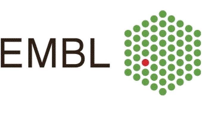 EMBL Disiplinlerarası Doktora Sonrası Araştırmacı Bursu EIPOD Başvurularınızı Bekliyor! Son Başvuru Tarihi: 12 Eylül 2018