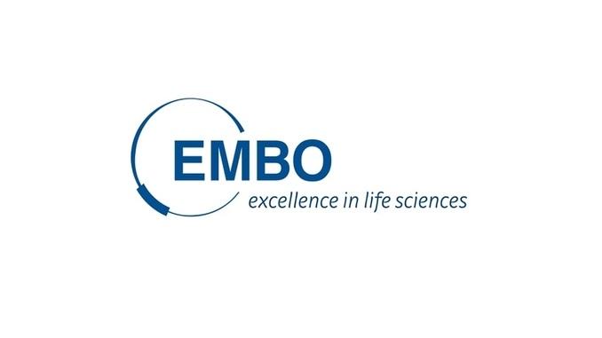 EMBO Yaşam Bilimlerinde Kurs ve Çalıştay Düzenleme Desteğine Başvurular İçin Son Tarih 1 Ağustos 2019!
